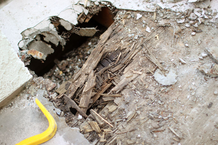 Laguna Beach Deck Repair_Dry Rot