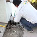 Rooftop Coatings_Wood Repairs