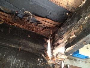 watrproof deck_leaking