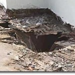 damp deck _ dry rot