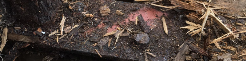 deck repair system _ dry rot